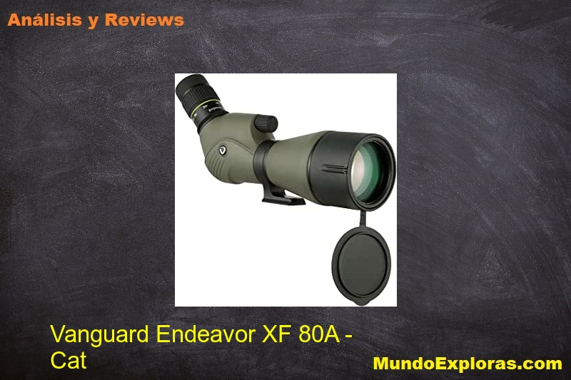 analisis vanguard endeavor xf 80a